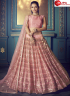 Pink Color Net Fabric Embroidered Sequence Work Designer Lehenga Choli
